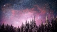 Magical Winter Snow Covered Tree. Winter Landscape. Vibrant Night Sky With Stars And Nebula And Gala