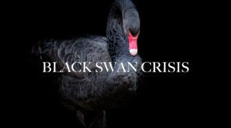 Black Swan Crisis