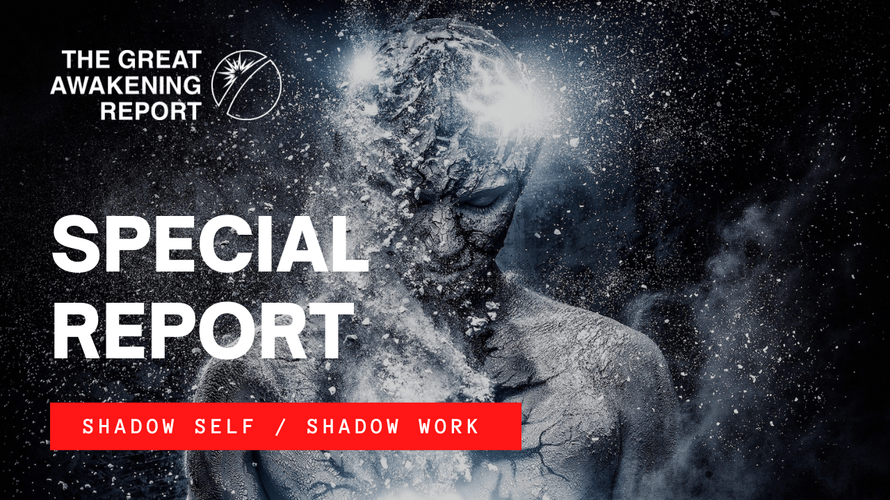 SPECIAL REPORT   SHADOW SELF : SHADOW WORK