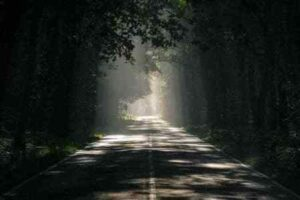 Shadow Work Journey